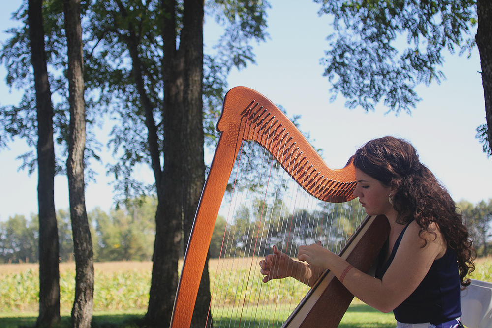 fall wedding autumn wedding harp player harpist Northern Michigan wedding Leelanau County wedding Aubrey ann parker photography