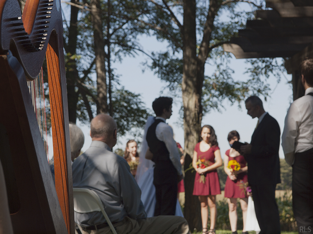 harp player harpist ceremony photo fall wedding autumn wedding outdoor wedding outside wedding Northern Michigan wedding Leelanau County wedding Randi Lyn SToltz photography