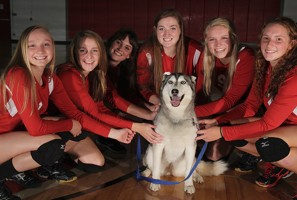 Benzie Volleyball Benzie Central Lady Huskies Lindsay Smith Olivia Chiumino Lauren Church Manon Lutzke Madi Kunkel Leah Stapleton BCHS senior 2017 Benzie Central volleyball Benzie Central varsity volleyball Benzie Central huskiess
