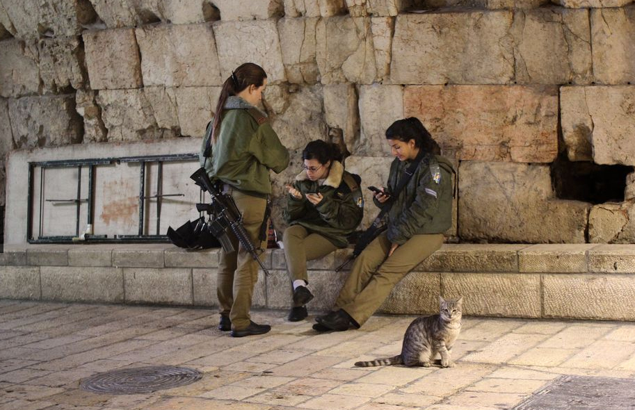 Aubrey Ann Parker Old City Jerusalem Western Wall cat Israel cats Israeli soldiers National Geographic Daily Dozen photo contest